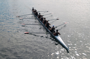 rowing2014-1