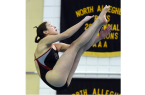 Diving2015_Simon_Trib