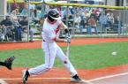 baseball15_Trib2