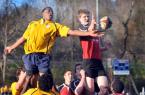 rugby15_Trib1